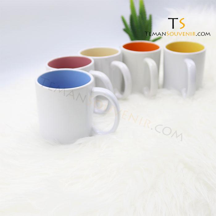 Mug Standar Warna (3)