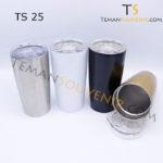 TS 25