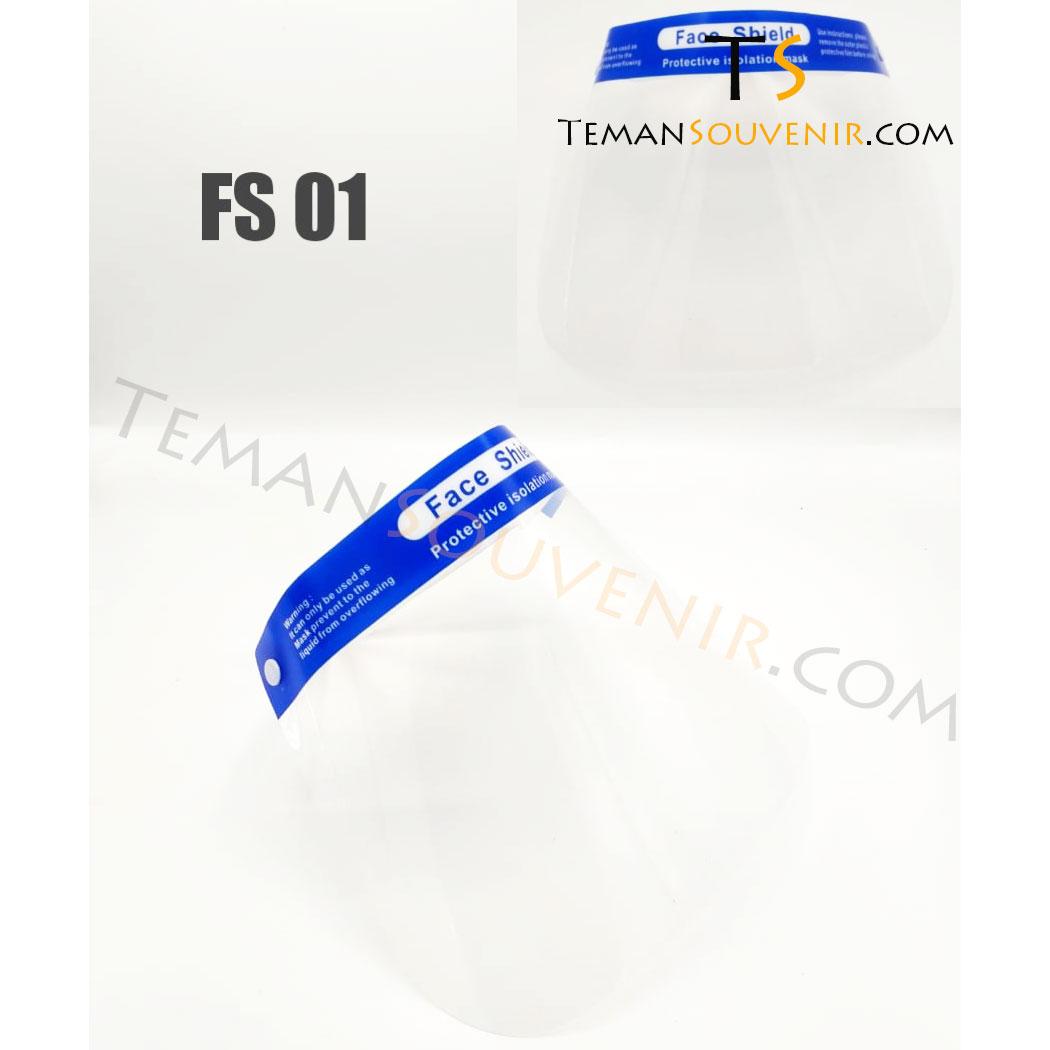 FS 01