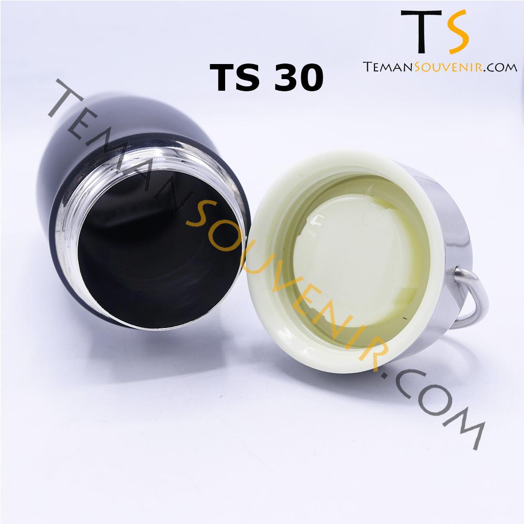 TS 30 B